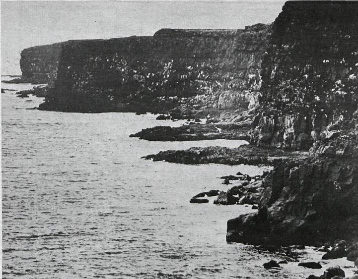 Krýsuvíkurberg 1972