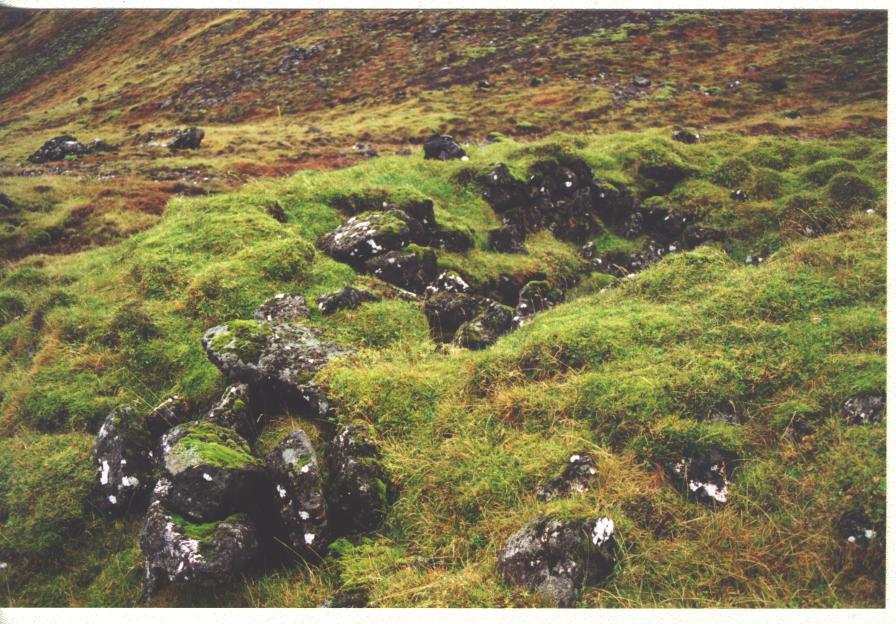 Hlíðarborg
