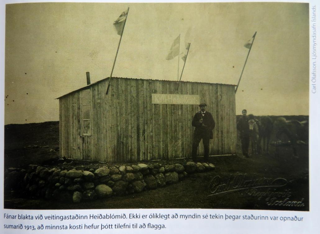 Heiðarblóm