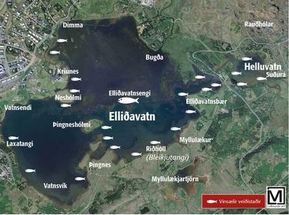 Elliðavatn