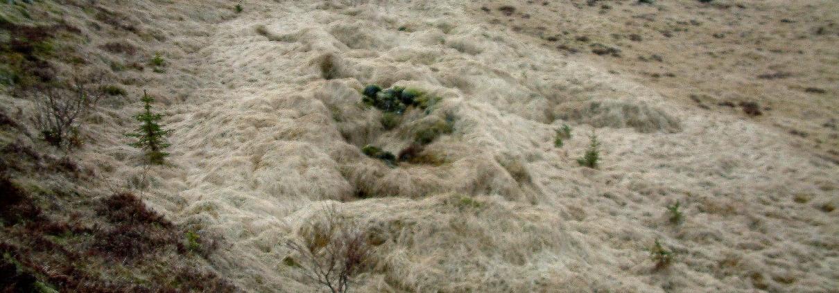 Njarðvíkursel