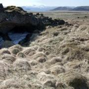 Hamraselshæðarhellir