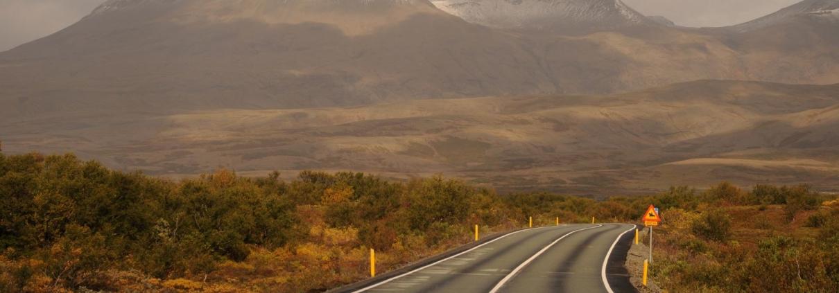 Þingvallavegur
