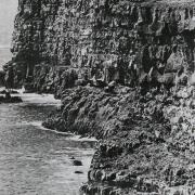 Krýsuvíkurbjarg