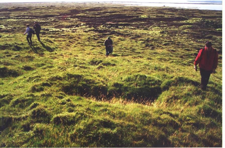 Þorkelsgerðisból
