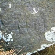 Kistugerði