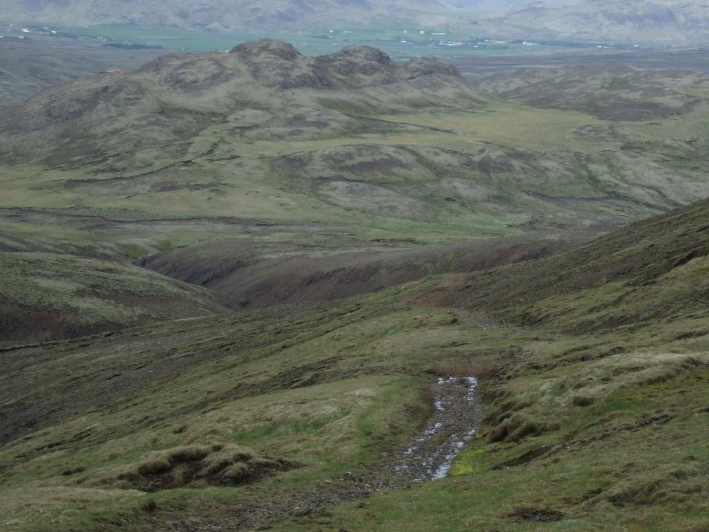 Svínaskarð