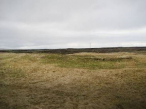 Litla-Leður