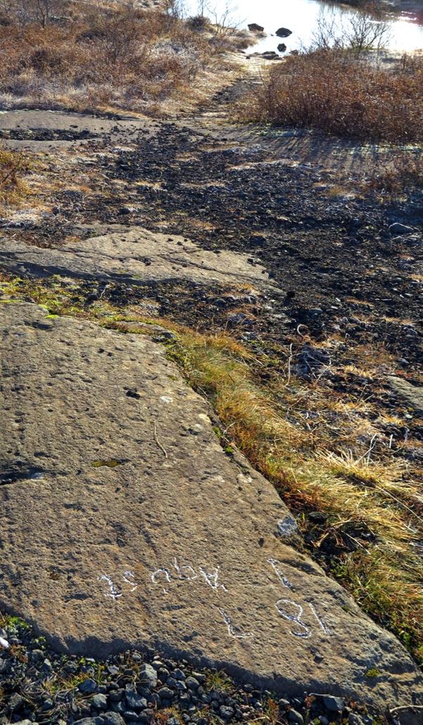 Suðurlandsvegur