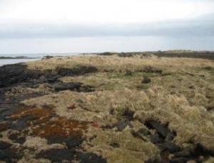 Vatnsskerbúðir