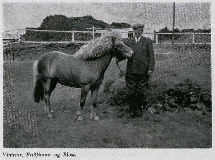 Friðfinnur V. Stefánsson