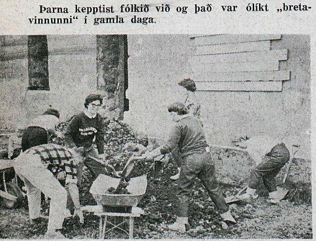 Garðakirkja