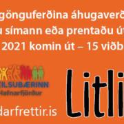 Litli Ratleikur Hafnarfjarðar 2020